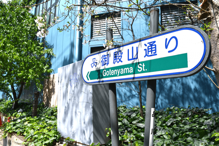 There are many spots to view the cherry blossoms alongside Gotenyama-Street.