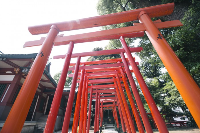 Vermilion-colored torii gates are lined up along a pathway which continues to the Ana Inari Shrine located beside the outer shrine.