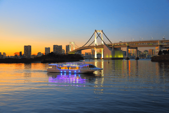 This cruiser-type boat can accommodate standing parties.