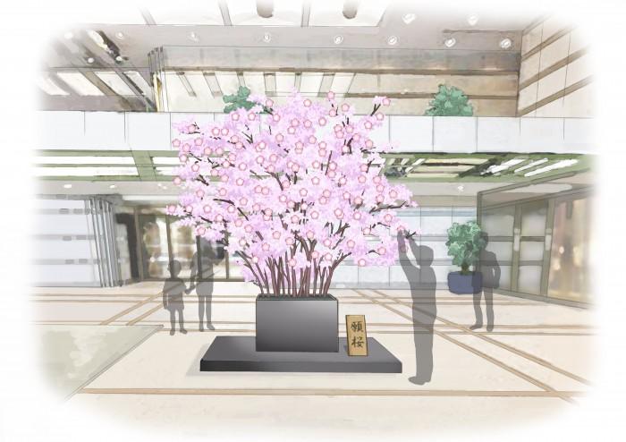 願い-桜の木イメージ