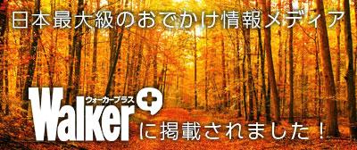 日本最大級のお出かけ情報メディア「ウォーカープラス」に掲載されました!